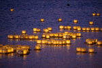 """Ripples of Friendship"" extend from the Shinnyo Lantern Floating in Taiwan"